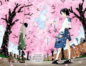 Rating: Safe Score: 39 Tags: black_hair cherry_blossoms clouds flowers fuura_kafuka grass hanging itoshiki_nozomu petals sayonara_zetsubou_sensei school_uniform short_hair skirt sky socks tree User: Oyashiro-sama