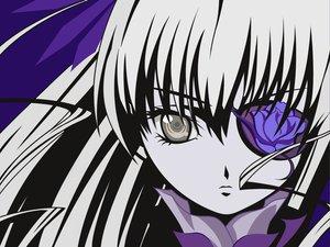 Rating: Safe Score: 16 Tags: barasuishou close eyepatch polychromatic rozen_maiden User: Oyashiro-sama