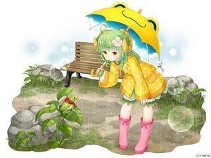Rating: Safe Score: 18 Tags: animal animal_ears asatsuki_(monmusu_harem) bloomers boots frog grass green_hair hoodie horns loli long_hair monmusu_harem namaru_(summer_dandy) rain umbrella water yellow_eyes User: otaku_emmy