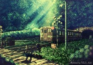 Rating: Safe Score: 121 Tags: animal cat nobody original scenic takashi_araki train watermark User: Flandre93