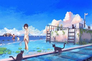Rating: Safe Score: 78 Tags: animal cat dress hanasei original sky water User: FormX
