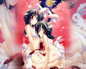 Rating: Safe Score: 87 Tags: 2girls animal_ears bikini bunny_ears bunnygirl inaba_tewi kurashima_tomoyasu navel reisen_udongein_inaba swimsuit touhou User: Oyashiro-sama