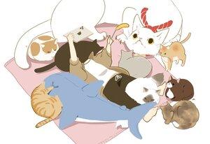 Rating: Safe Score: 22 Tags: animal cat chai_(artist) computer original signed User: otaku_emmy
