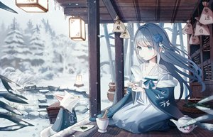 Rating: Safe Score: 70 Tags: animal blue_eyes blue_hair building chinese_clothes drink fox iren_lovel long_hair original snow water User: Dreista
