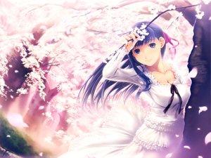 Rating: Safe Score: 62 Tags: blue_hair cherry_blossoms dress fate_(series) fate/stay_night flowers long_hair matou_sakura petals purple_eyes purple_hair ribbons simosi User: Oyashiro-sama