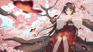 Rating: Safe Score: 44 Tags: black_eyes black_hair butterfly cherry_blossoms flowers houraisan_chouko japanese_clothes long_hair miko original petals tree User: RyuZU