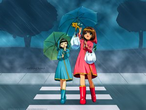 Rating: Safe Score: 27 Tags: card_captor_sakura daidouji_tomoyo kero kinomoto_sakura rain umbrella water User: gnarf1975