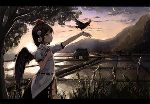 Rating: Safe Score: 65 Tags: animal bird brown_eyes brown_hair building clouds grass landscape pointed_ears scenic shameimaru_aya short_hair sky sunset tagme_(artist) touhou tree water wings User: BattlequeenYume