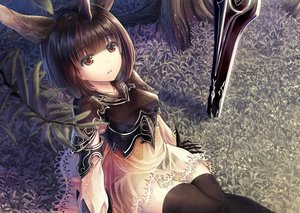Rating: Safe Score: 81 Tags: animal animal_ears brown_hair dress horns horse moon_al-mi'raj red_eyes shadowverse short_hair sword thighhighs tree unicorn weapon windfeathers zettai_ryouiki User: BattlequeenYume