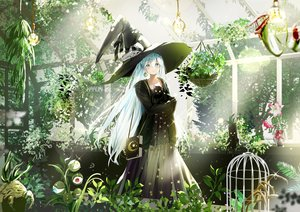 Rating: Safe Score: 73 Tags: aliasing animal aqua_eyes aqua_hair book cage cat dress hat hoodie leaves long_hair mullpull original watermark white_hair witch witch_hat User: BattlequeenYume