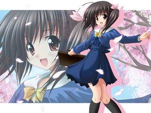 Rating: Safe Score: 5 Tags: aquaplus leaf petals to_heart to_heart_2 yuzuhara_konomi User: Oyashiro-sama