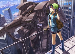 Rating: Safe Score: 184 Tags: armored_core bike_shorts blue_eyes blue_hair boots building city crossover gloves hat headphones kawashiro_nitori kneehighs kurione_(zassou) mecha navel necklace rooftop short_hair shorts touhou water User: FormX