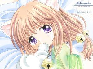 Rating: Safe Score: 15 Tags: animal_ears bell blush brown_hair catgirl purple_eyes see_through User: Oyashiro-sama