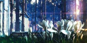 Rating: Safe Score: 38 Tags: 3d building flowers forest nobody original scenic tree waisshu_(sougyokyuu) User: RyuZU