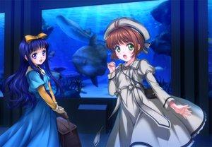 Rating: Safe Score: 53 Tags: 2girls animal card_captor_sakura daidouji_tomoyo fish kinomoto_sakura moonknives water User: gnarf1975