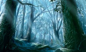 Rating: Safe Score: 141 Tags: 108 forest ginko_(mushishi) mushishi tree white_hair User: w7382001