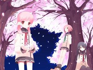 Rating: Safe Score: 24 Tags: black_hair cherry_blossoms cuffs_(studio) flowers mitsuki_mouse pantyhose petals pink_hair sakura_musubi school_uniform skirt tie User: Xtea