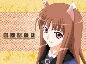 Rating: Safe Score: 19 Tags: animal_ears brown_hair horo long_hair ookami_to_koushinryou red_eyes vector wolfgirl User: Oyashiro-sama