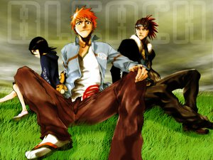 Rating: Safe Score: 18 Tags: abarai_renji bleach grass kon kuchiki_rukia kurosaki_ichigo male User: Oyashiro-sama