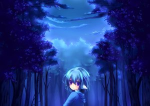 Rating: Safe Score: 67 Tags: blue clouds forest konno_kengo monochrome short_hair tears tree User: Dust