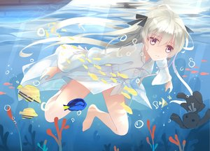 Rating: Safe Score: 105 Tags: animal barefoot bubbles fish kasugano_sora .l.l long_hair ribbons underwater water yosuga_no_sora User: Flandre93