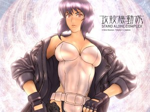 Rating: Safe Score: 30 Tags: ghost_in_the_shell ghost_in_the_shell:_stand_alone_complex kusanagi_motoko User: Oyashiro-sama