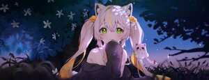 Rating: Safe Score: 52 Tags: animal_ears catgirl cheli_(kso1564) dan_gyuri flowers grass green_eyes long_hair night stars twintails white_hair User: BattlequeenYume