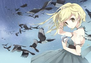 Rating: Safe Score: 27 Tags: animal bird blonde_hair night stars tiv User: luckyluna