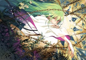 Rating: Safe Score: 41 Tags: all_male bicolored_eyes chain enkidu fate/grand_order fate_(series) flowers green_hair leaves long_hair male seomouse User: otaku_emmy