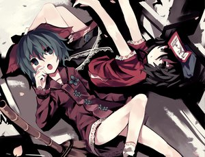 Rating: Safe Score: 73 Tags: 2girls animal_ears govurin kasodani_kyouko miyako_yoshika petals touhou User: opai