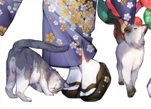 Rating: Safe Score: 32 Tags: animal cat japanese_clothes original waifu2x white whoisshe User: RyuZU