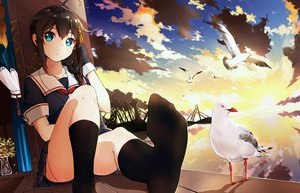 Rating: Safe Score: 163 Tags: animal aqua_eyes bird braids brown_hair clouds headphones kantai_collection kneehighs long_hair ponytail seifuku shakugan_(natural_stay) shigure_(kancolle) sky sunset User: Flandre93
