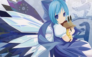 Rating: Safe Score: 123 Tags: blue_eyes blue_hair cirno doll fairy moriya_suwako signed touhou vector User: 秀悟