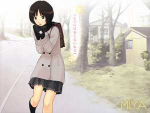 Rating: Safe Score: 65 Tags: amagami tachibana_miya takayama_kisai User: paul3234