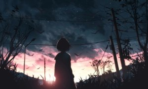 Rating: Safe Score: 89 Tags: clouds grass original polychromatic scenic short_hair silhouette sky skyrick9413 stars sunset tree User: mattiasc02