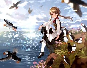 Rating: Safe Score: 46 Tags: animal apron bird blush brown_eyes brown_hair clouds dress flowers grass long_hair original scarf sky tan_(tangent) twintails water User: RyuZU