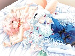 Rating: Safe Score: 30 Tags: 2girls animal_ears doggirl game_cg lily_(w&l) sakurazawa_izumi sleeping tail waifu2x wanko wanko_to_lily User: luckyluna