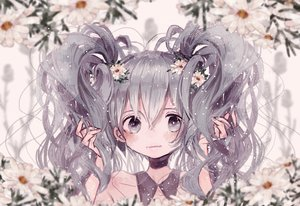 Rating: Safe Score: 27 Tags: flowers gray_eyes gray_hair hatsune_miku long_hair polychromatic supika twintails vocaloid User: FormX