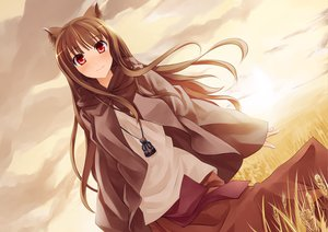 Rating: Safe Score: 71 Tags: animal_ears brown_hair clouds horo long_hair pino_(birthdayparty) red_eyes sky spice_and_wolf wolfgirl User: HawthorneKitty