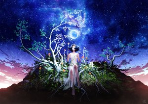 Rating: Safe Score: 29 Tags: barefoot black_hair clouds dress flowers mocha_(cotton) original scenic see_through short_hair signed sky stars tree User: FormX