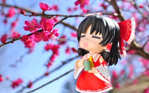 Rating: Safe Score: 36 Tags: cherry_blossoms chibi drink figure flowers hakurei_reimu japanese_clothes miko photo touhou User: rargy