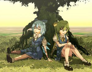 Rating: Safe Score: 21 Tags: blue_hair cirno daiyousei fairy grass green_hair long_hair ponytail short_hair touhou tree wings User: w7382001