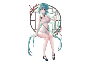 Rating: Safe Score: 109 Tags: albinoraccoon blush breasts chinese_clothes chinese_dress cleavage dress flowers green_eyes green_hair hatsune_miku long_hair signed socks vocaloid white User: otaku_emmy
