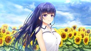 Rating: Safe Score: 59 Tags: asami_asami blue_hair blush clouds flowers fujisaki_haruka game_cg hibiki_works long_hair natural_vacation purple_eyes sky summer sunflower User: RyuZU