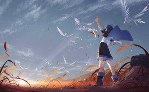 Rating: Safe Score: 49 Tags: all_male animal arsh_(thestarwish) bird blue_hair boots clouds grass male original short_hair shorts sky sunset User: otaku_emmy