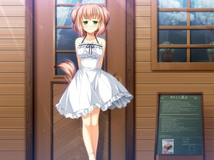 Rating: Safe Score: 67 Tags: animal_ears brown_hair doggirl dress game_cg green_eyes koya_chachako otomimi_infinity ribbons tail User: Maboroshi