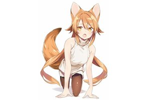 Rating: Safe Score: 86 Tags: animal_ears brown_hair dress fang foxgirl long_hair original pantyhose sama tail white yellow_eyes User: otaku_emmy