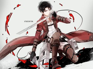 Rating: Safe Score: 15 Tags: all_male black_hair gloves gray_eyes levi_ackerman male michi_(iawei) shingeki_no_kyojin short_hair sword weapon User: FormX
