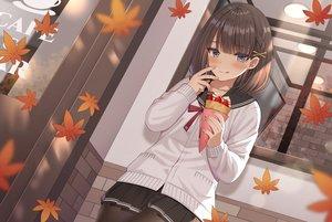 Rating: Safe Score: 62 Tags: autumn blue_eyes blush brown_hair food fruit izumo_neru leaves original pantyhose school_uniform short_hair skirt strawberry User: BattlequeenYume
