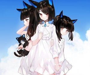 Rating: Safe Score: 49 Tags: animal black_hair brown_eyes cat clouds cropped dress lolita_fashion long_hair moemoe3345 original ponytail short_hair sky wristwear User: otaku_emmy